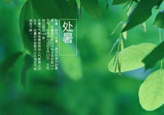2019处暑节气祝福语大全 处暑节气祝福语经典说说