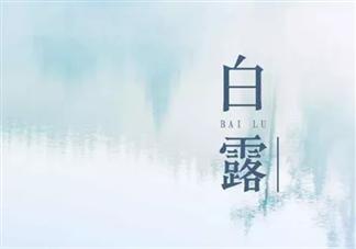 2019白露节气各品牌海报文案赏析 白露海报文案合集