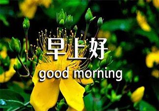 2019周末早安心语正能量说说 周末早安心情简单一句话祝福语