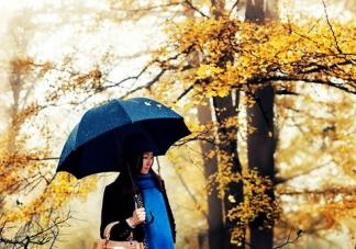 第一场秋雨朋友圈心情说说 关于秋雨的心情感慨