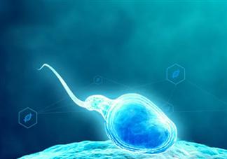 正常男性每次射出多少精子正常 精子多少时间不液化是异常的