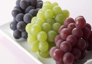 中秋节为什么要吃葡萄 中秋节吃葡萄代表什么