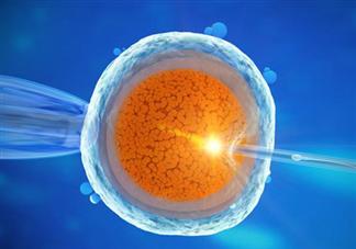 卵泡监测为什么要做阴超检查 B超监测排卵前能同房吗