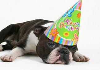 如何文艺的说生日快乐 表达生日快乐的文艺祝福语