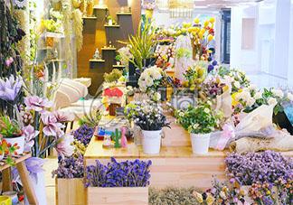 花店不开了花继续开表达了什么 《伪诗集》里的其他耐人寻味的小诗