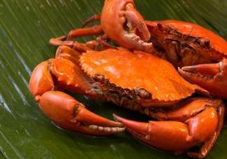 宝宝吃螃蟹过敏的症状 吃螃蟹过敏怎么办