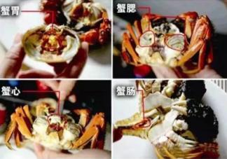 螃蟹哪些部位不能吃图解 螃蟹怎么吃图解