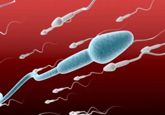 什么样的行为会对导致精子畸形 精子畸形还能生育吗