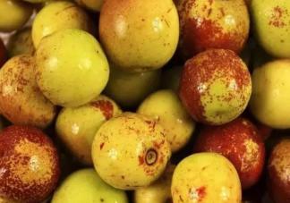 吃冬枣有什么好处和坏处 吃冬枣可以补血吗