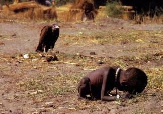 全球超8亿人没有充足食物是真的吗 珍惜粮食的重要性