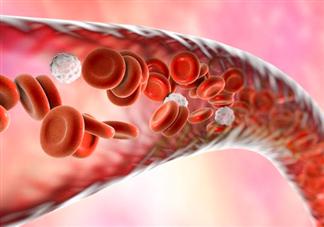 血管堵塞有什么危害 血管堵塞怎么疏通