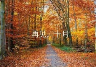 十月再见十一月你好朋友圈说说 十月再见十一月你好正能量句子