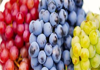 抗氧化吃葡萄籽有用吗 吃抗氧化剂能不能延缓衰老