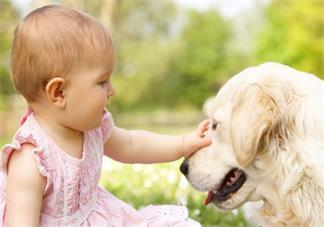 宝宝长湿疹可以打疫苗吗 宝宝湿疹之后要注意什么