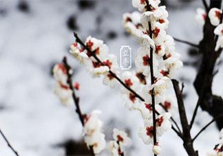 又是一年立冬到的祝福语说说 2019立冬来了的微信祝福语