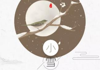 2019小雪节气文案怎么写 各品牌小雪创意文案大全