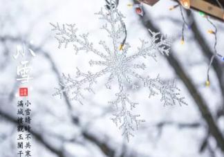 今日小雪的诗有哪些 今日小雪古诗短句大全