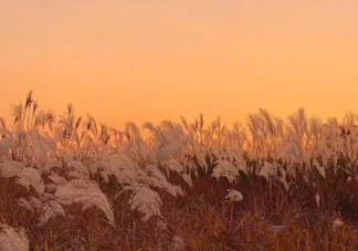 2019冬天伤感的心情说说 冬天伤感的唯美句子