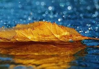 早上下雨的心情说说 朋友圈下雨的心情句子
