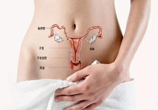 子宫后位是怎么引起的 子宫后位如何增加受孕机会