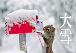 2019大雪节气微信朋友圈心情文案分享 大雪节气文案句子唯美说说