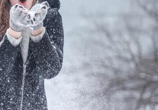 大雪节气怎么养生 2019大雪节气养生方法