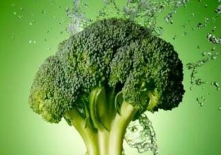 大雪节气吃什么蔬菜好 大雪后养生食物大全