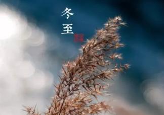 2019冬至节气早安朋友圈文案配图句子 冬至节气优美祝福语