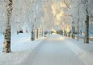 下雪天路滑温馨提示句子 下雪天路滑温馨提示说说