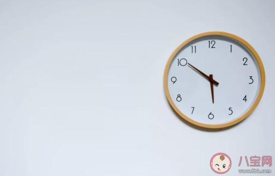 8小时饮食法可以喝奶茶吗 8小时饮食法相关问题汇总