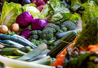 2019十大饮食减肥法是什么 十大饮食减肥法详细讲解