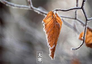 2020大寒早安心语文案句子带图 大寒节气早安朋友圈说说祝福语
