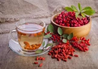 红枣泡枸杞水能每天喝吗 红枣泡枸杞水的禁忌是什么