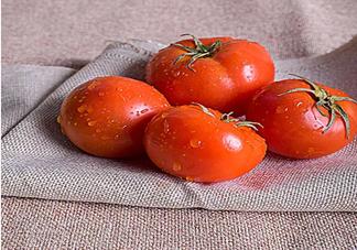 番茄生吃还是煮熟吃比较好 哪些人不适合多吃番茄