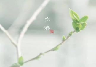 2020立春节气个性文案说说 立春唯美朋友圈说说图片