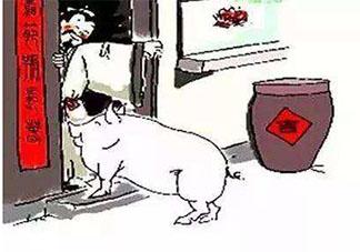 大年初三肥猪拱门是什么意思 肥猪拱门有什么寓意
