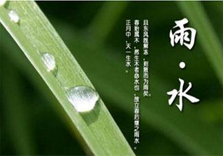 2020关于雨水节气的经典说说祝福语 雨水节气的个性祝福语文案大全