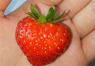 吃草莓发什么心情句子 2020吃草莓发什么说说感慨