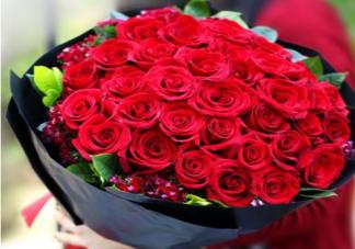 2020情人节送女友什么花比较好 情人节送花应该送多少朵