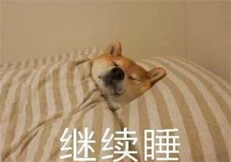 睡到自然醒说说心情 每天能够睡到自然醒说说朋友圈