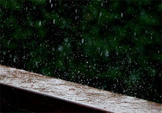 2020雨水节气祝福语简短说说 雨水节气的美好祝福语句子大全