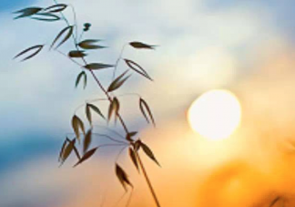 疫情期间可以在家门口晒太阳吗 疫情期间可以在阳台晒太阳吗
