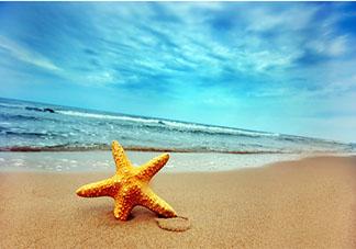关于晒海边照片的朋友圈文案说说 去海边了发朋友圈的说说句子