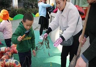 2020幼儿园植树节主题活动报道稿三篇 2020幼儿园植树节种树的活动报道美篇