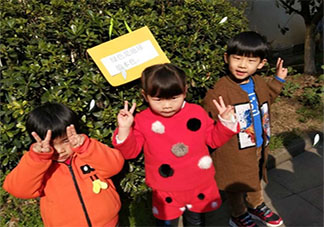 幼儿园植树节亲子活动报道稿2020 幼儿园植树节植树的活动报道大全