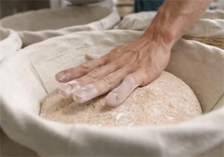 面包发酵失败是怎么回事 面包发酵失败原因是什么