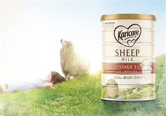 可瑞康绵羊奶粉怎么样 可瑞康绵羊奶粉试用测评