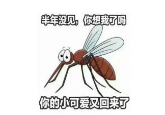 蚊子会传播新冠病毒吗 蚊子能够传播哪些疾病