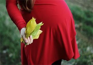 排卵期是体温高还是低 怎么判断自己的排卵期