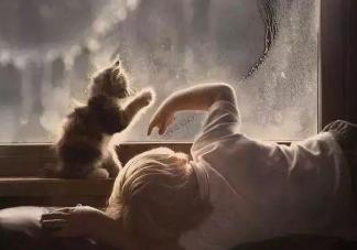 孩子虐待动物是有心理疾病问题吗 孩子虐待动物家长怎么引导教育